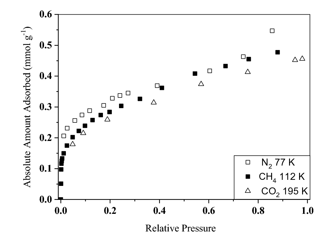 Subcritical gas adsorption by Alum shale